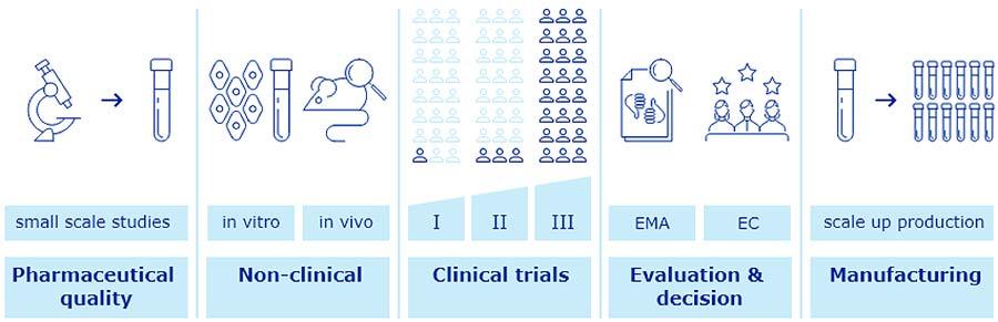 Obr. 1: Prehľad vývoja aschválenia vakcíny (10).